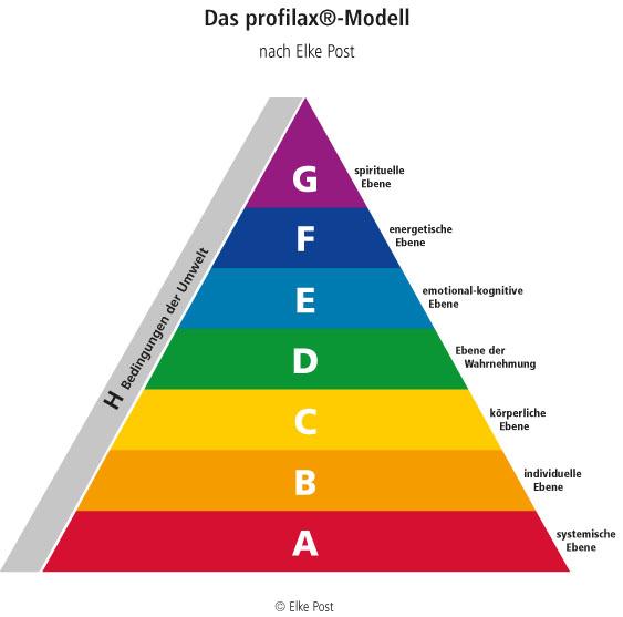 Pyramide Profilax-Modell